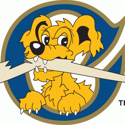 Charleston RiverDogs's avatar