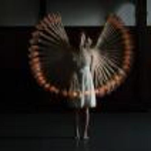 Dina Saeed 3's avatar