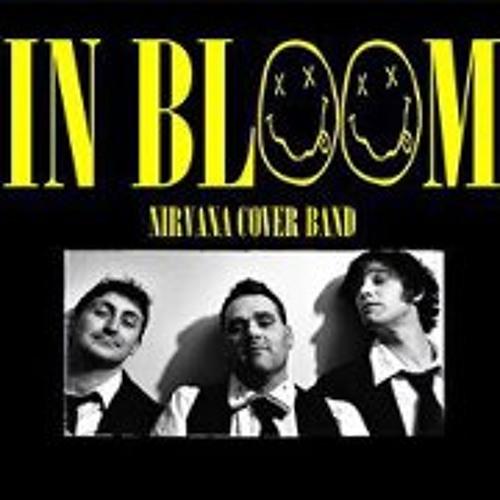 Inbloom Nirvana Cover's avatar
