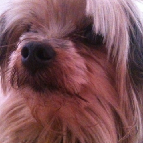 B.R.I.D.G.E.T;)'s avatar