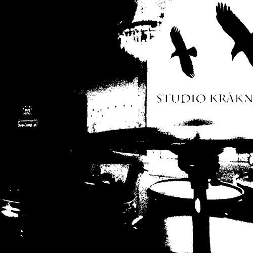 Studio Kråknästet's avatar