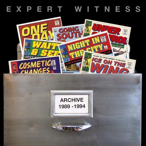 Expert Witness's avatar