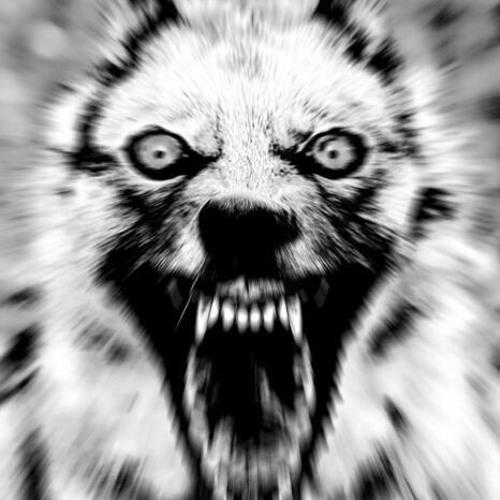 Ozerock's avatar