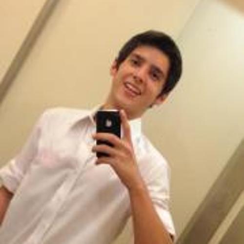 Bruno Ferreira Lara's avatar