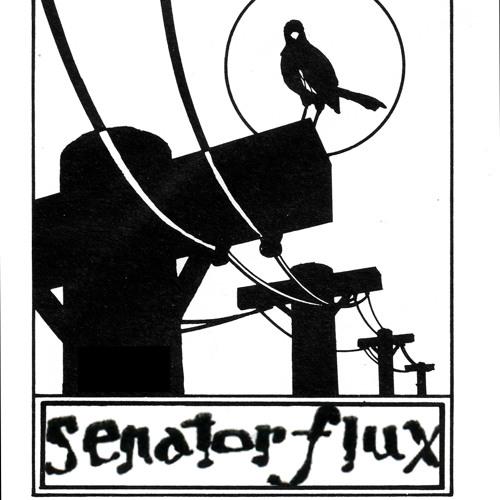 SenatorFlux's avatar
