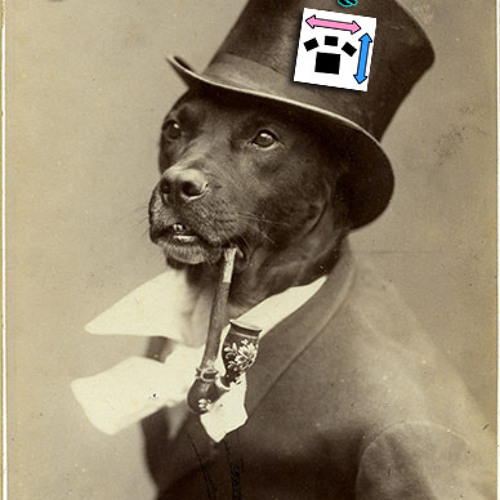 Pet Accessories's avatar