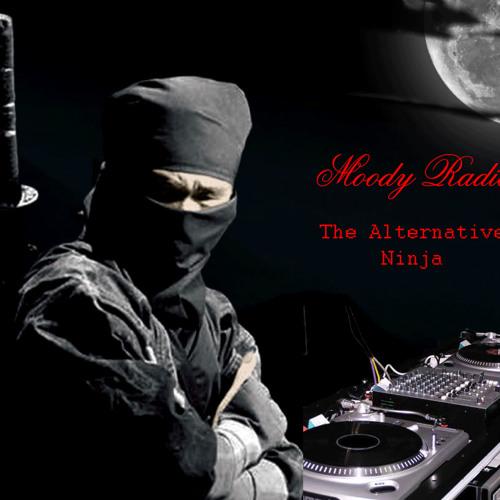 MoodyNinjaRadio's avatar
