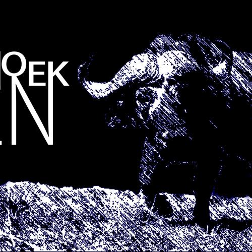 Ren Hoek's avatar