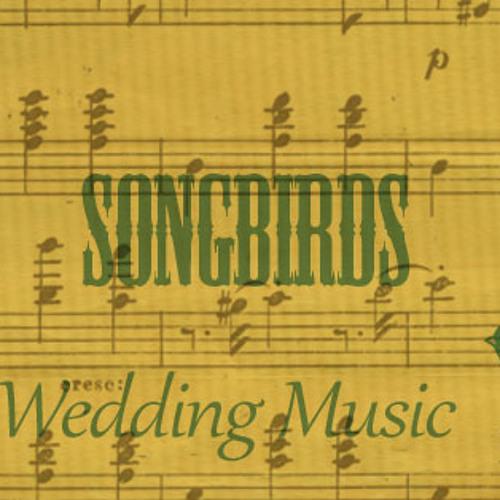 Songbirds Wedding Music's avatar