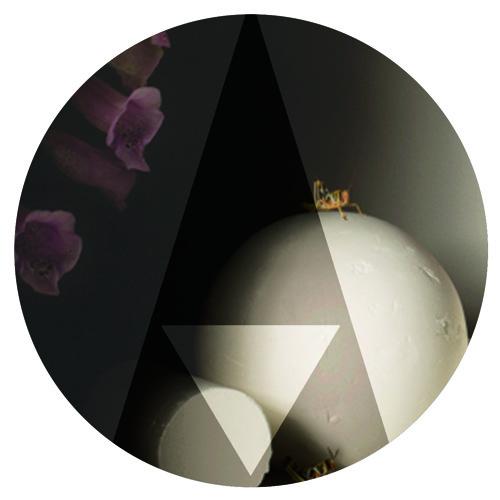 Morgan Hood's avatar