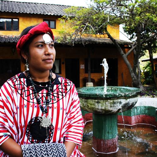 San Lucas Tolimán's avatar