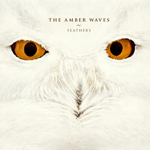 The Amber Waves's avatar