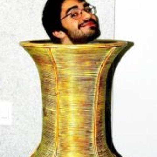 Leonardo Amaral 13's avatar