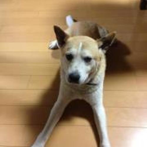 Kazuo Iwai's avatar