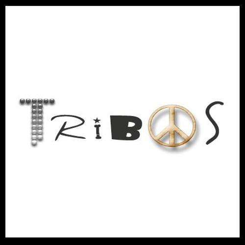 Programa Tribos's avatar
