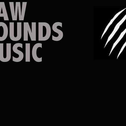 RAW SOUNDS MUSIC's avatar