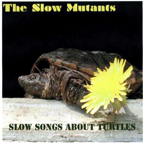 The Slow Mutants's avatar