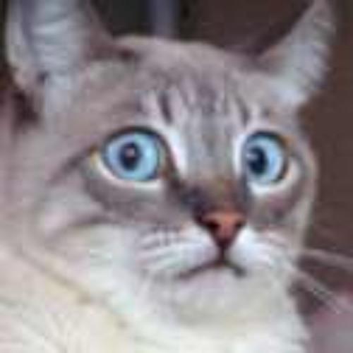 teddythetank's avatar