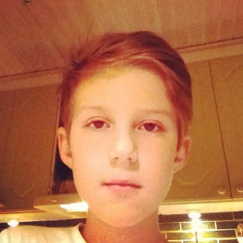 Fredrikss[]n's avatar