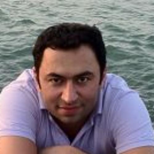 Mohammad Varaminy's avatar