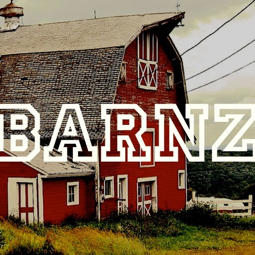 _BARNZ_'s avatar