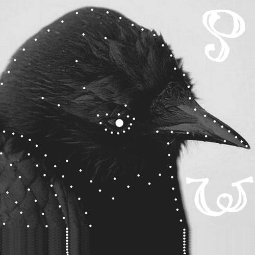Punthr Woicest's avatar