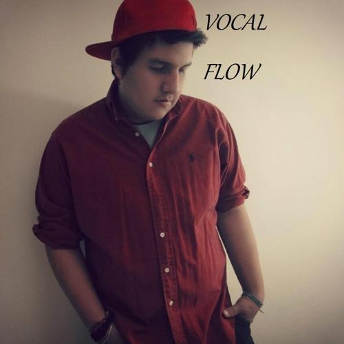 Vocalflow Calle's avatar