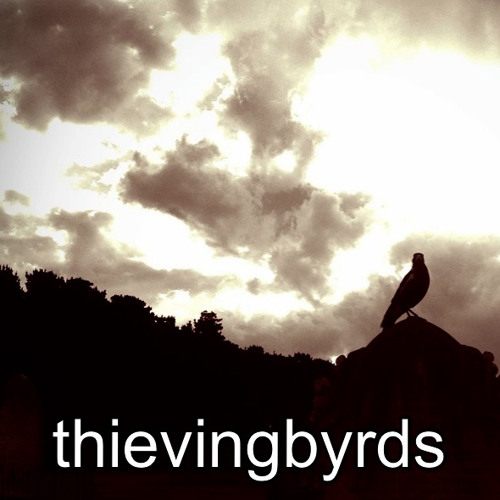 thievingbyrds's avatar