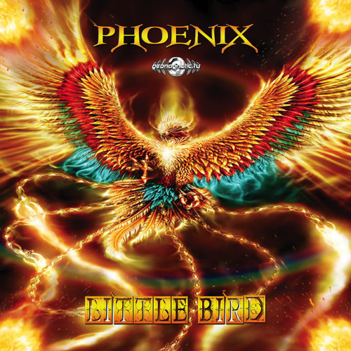 Phoenix - Stop Pushing