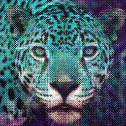 Jazzcat (Litterbox5)'s avatar