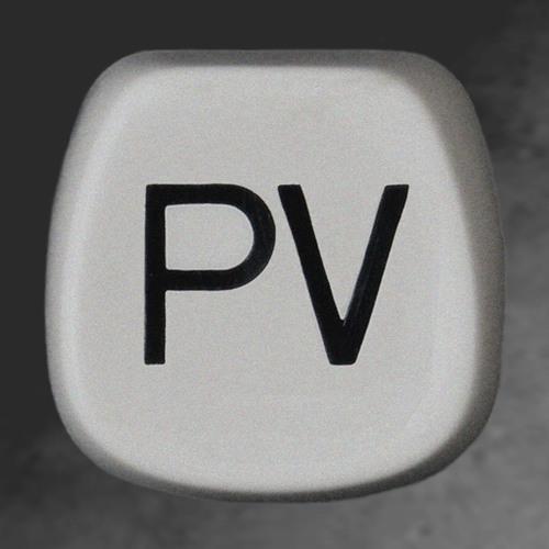 Pinata Vandals's avatar