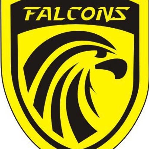 Volta Redonda Falcons FA's avatar
