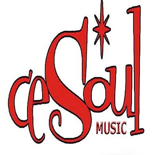 Cesoul Music's avatar