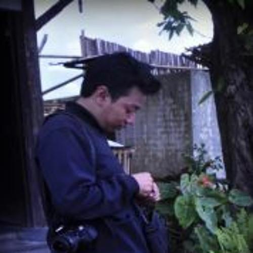 Dhevit Putra L's avatar
