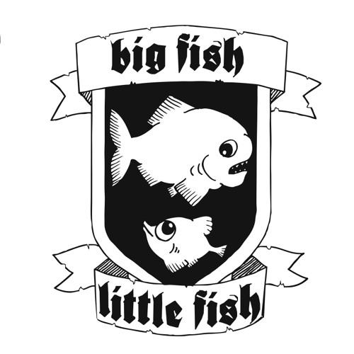 Big Fish Little Fish M.P.'s avatar