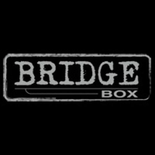 BridgeBox's avatar