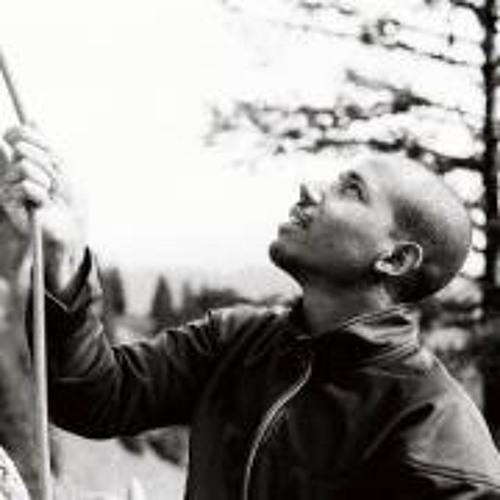Leonhard Akinbiyi's avatar