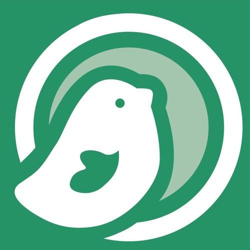 Pajarito Cafe Sounds's avatar