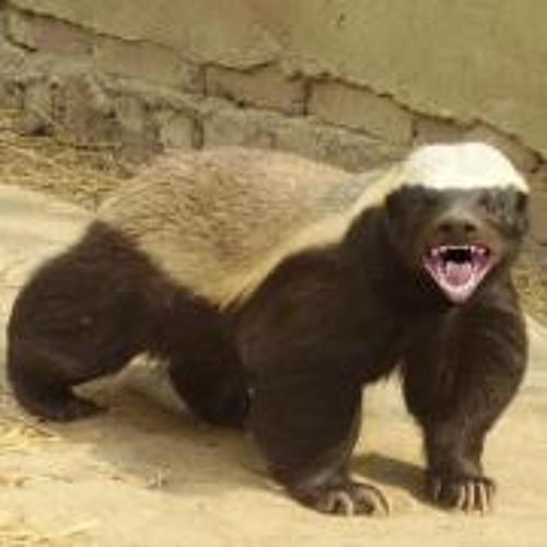 James Beaton's avatar