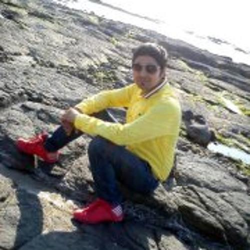 Nilesh Giri Goswami's avatar