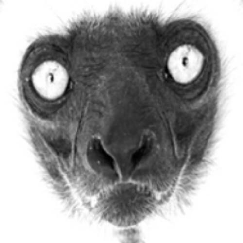 Stoopaloop's avatar