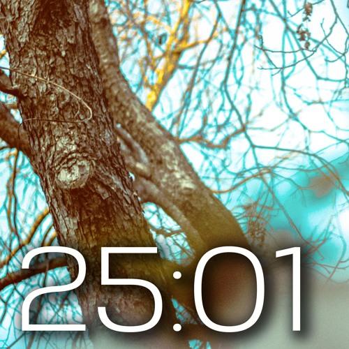 25:01 x's avatar