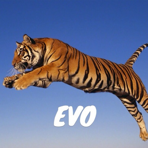 Tiger EVO's avatar