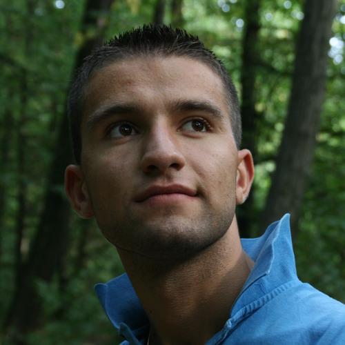 Ion Ulinici's avatar