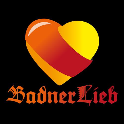 badnerlieb's avatar