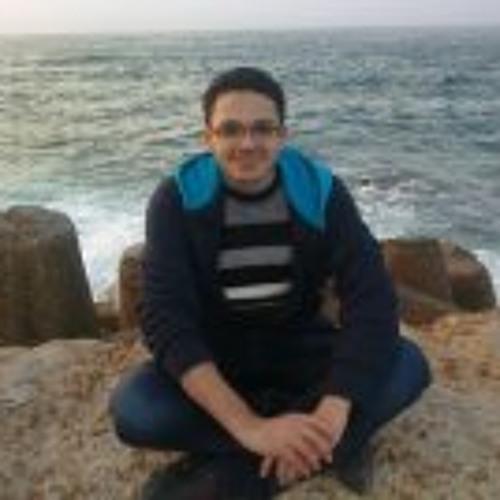 Adel Nasr Sharaky's avatar