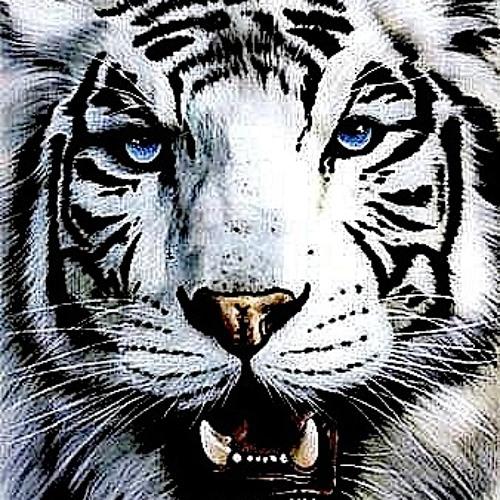Ayaaicha's avatar