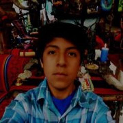 Andre Danilo Berrospi Roa's avatar