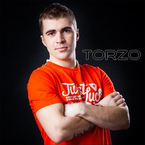 Torzo's avatar