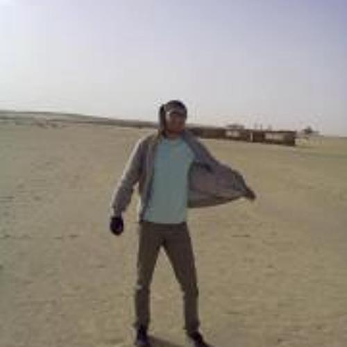 Omar Abu-Gamil's avatar